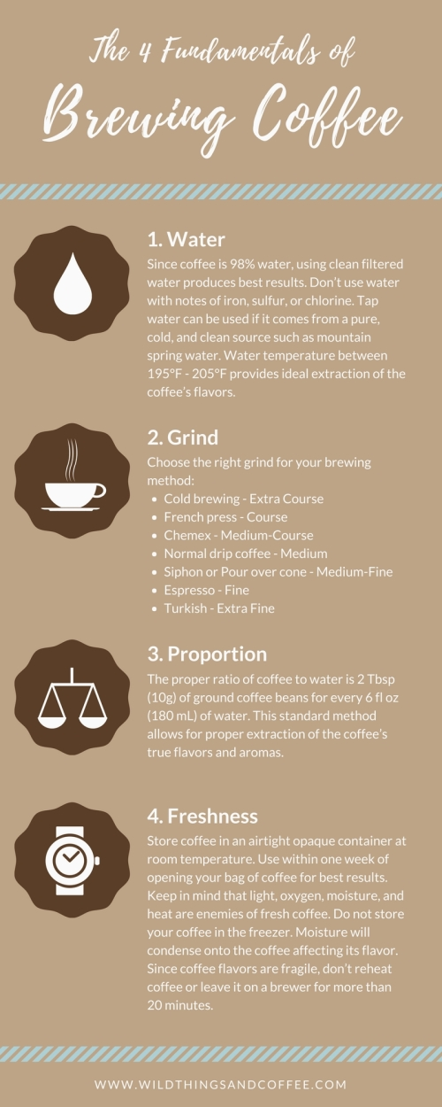 4 Fundamentals of Brewing Coffee Infographic by Wild Things and Coffee