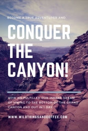 Conquer the Grand Canyon Graphic
