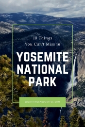 10 Things You Can't Miss in Yosemite National Park