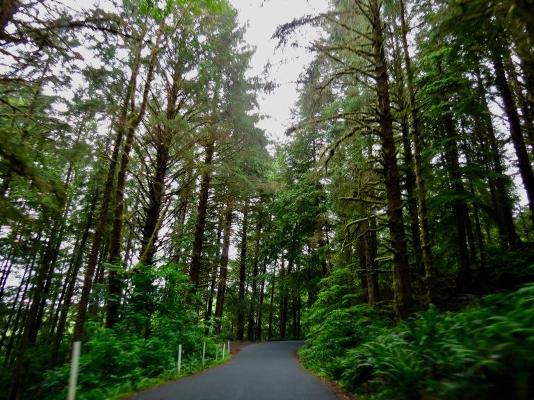 Ecola State Park Oregon