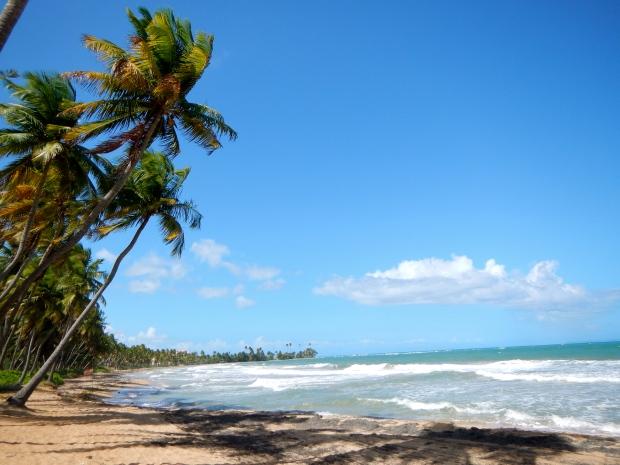 Palmas Del Mar Beach Puerto Rico