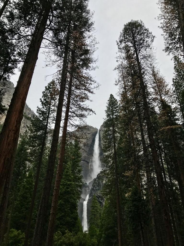 Yosemite Falls from Lower Yosemite Falls Trail