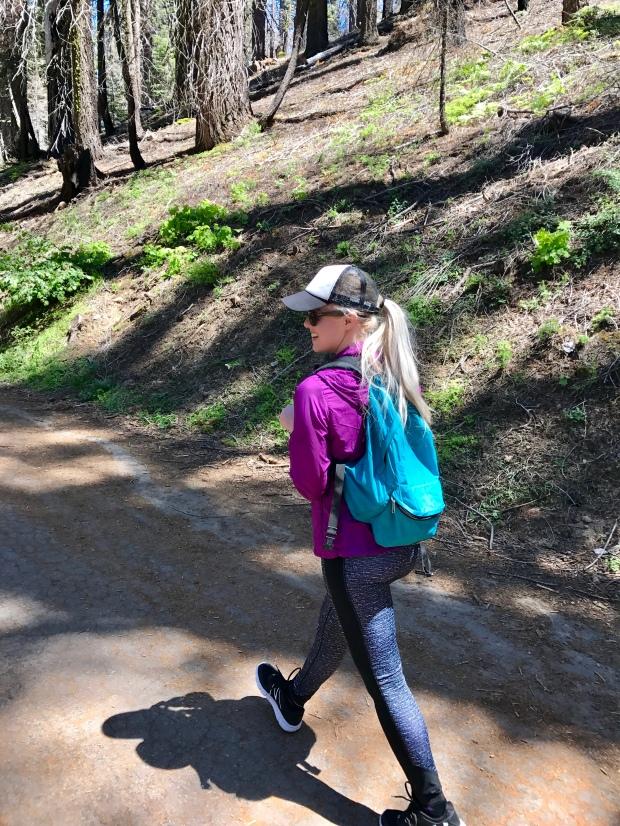 Hiking Tuolumne Grove